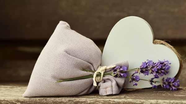 חומרי ריח סינטטים במוצרים קוסמטיקה – Fragrance-לבנדר, קוסמטיקה טבעית