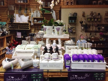 https://www.lavender.co.il/wp-content/uploads/2019/05/asd-16.jpg