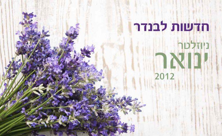לבנדר קוסמטיקה טבעית – החשיבות של ויטמין D – ניוזלטר ינואר 2012